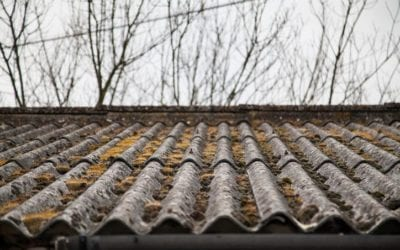 4 Signs You Need a New Roof